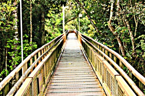 The Iguaçu Falls national park is well served with foot trails.