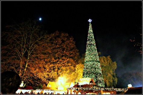 Gather around the giant Christmas Tree with festival drinks and hot food