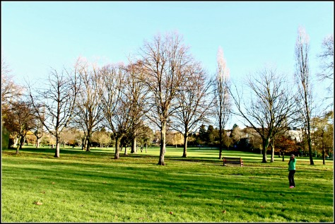 A beautiful sunny winter morning in King Edward VII Park