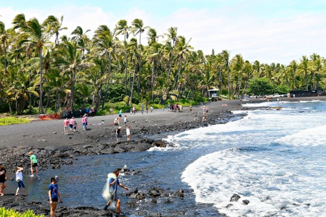 "Punalu'u is what you would call ""away from it all."" So a trip just to Punalu'u is a journey, besides being rated as the world's best black sands beach"
