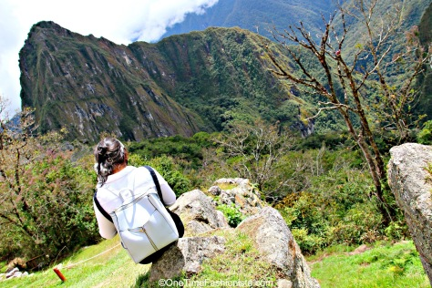 Each fresh peak ascended teaches something- Anonymous
