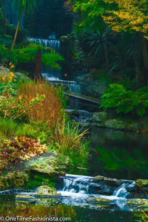 Hidden treasure inside the Hyde park...resembling a scene from Avatar?