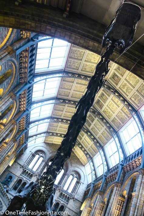 Story, History and A Weekend Outing at Natural History Museum