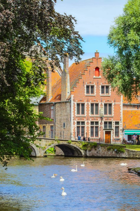 Budge in Brugge, Remedy for The Bruise : Part I
