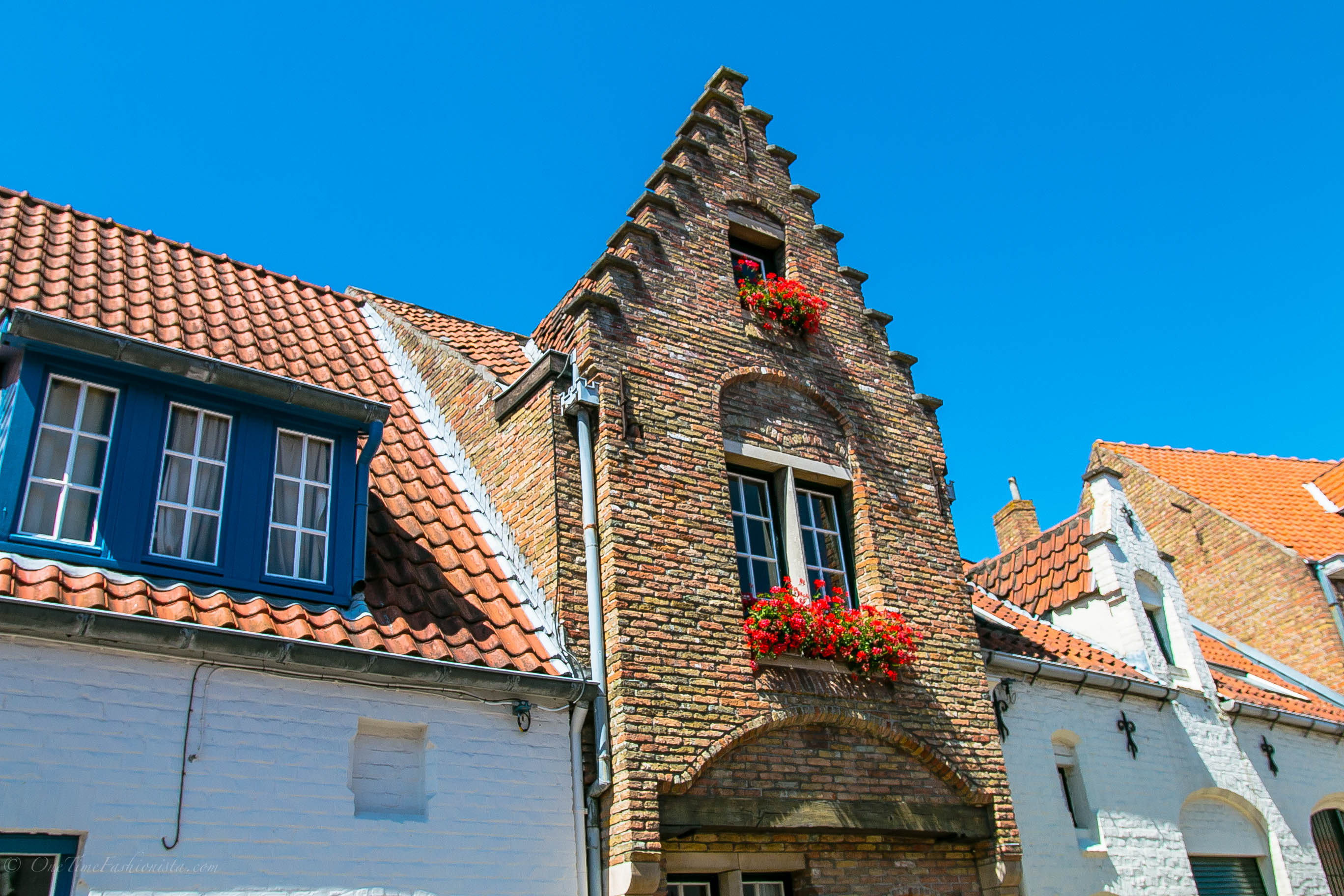 Budge in Brugge, Remedy for the Bruise: Part 2