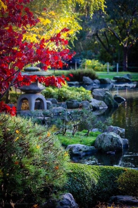 Paradise promenade in Holland Park London
