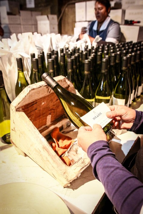 Winning Wines of Chile: Santiago Vineyards Sip Trip